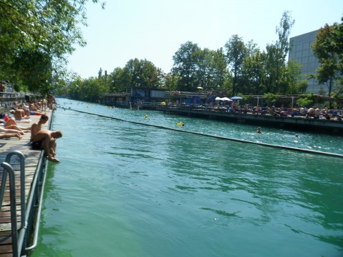 Swimming In The Limmat