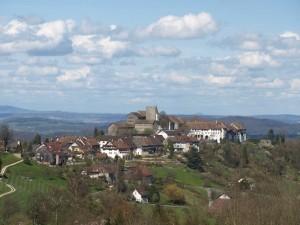 View Of Regensberg